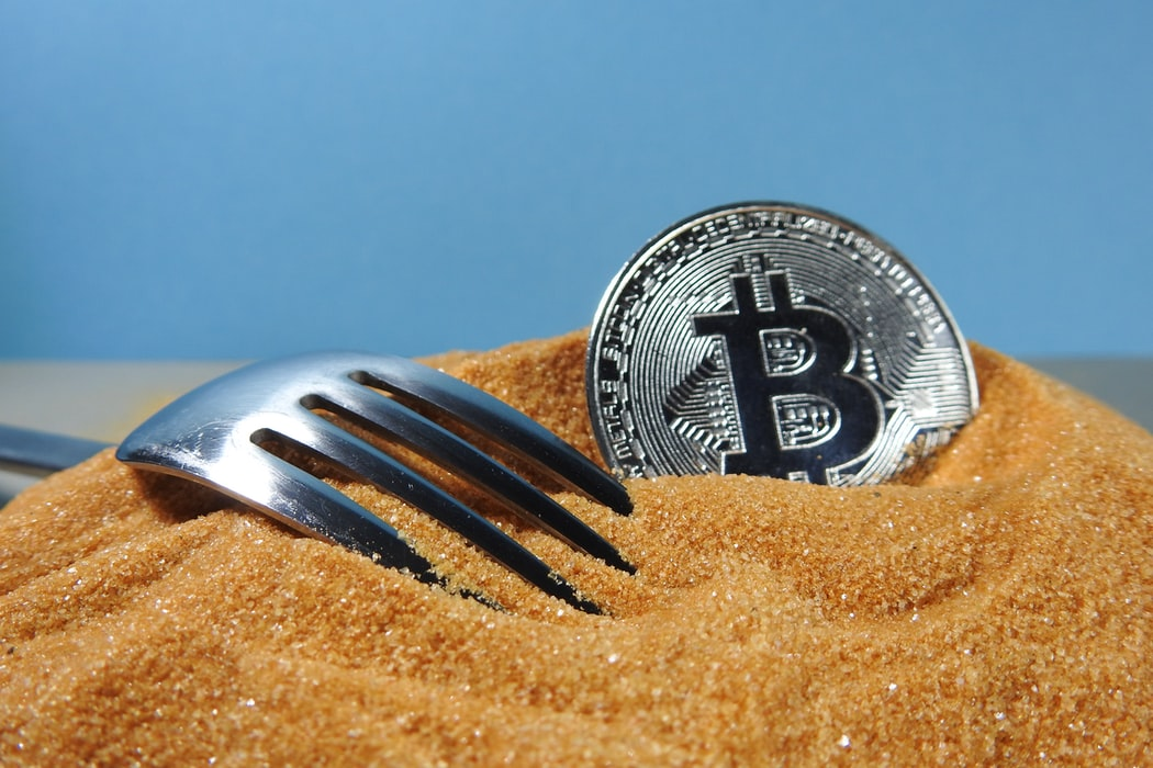 Blog: What are cryptocurrency forks?